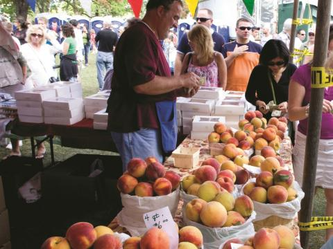 Um fazendeiro vendendo pêssegos frescos no Annual Niagara County Peach Festival