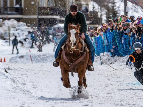 Skijoring a cavalo durante o West Yellowstone's Skijor West Championships