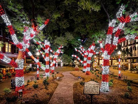Luzes de Natal iluminando Knoxville, Tennessee